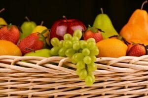 Not all fruit is safe for a Maltese dog